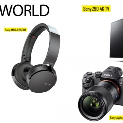 Sony's World