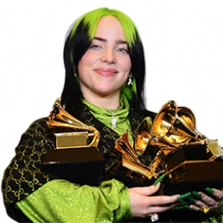 The 62nd Annual Grammys Awards